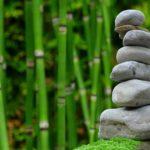 Piękny ,a także porządny zieleniec to zasługa wielu godzin spędzonych  w jego zaciszu w trakcie pielegnacji.